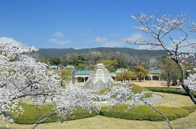 墓地 公園 関西 池田 記念