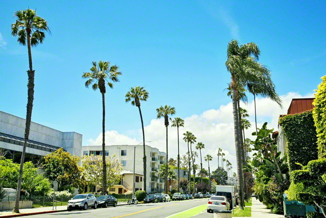 アメリカ・カリフォルニア州の街並み。移民が多く、多様な民族と文化が共生する