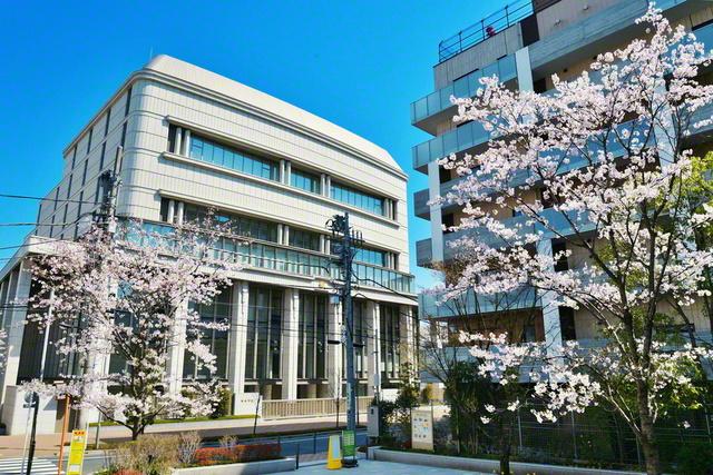東京・信濃町の総本部を彩る大誓堂前広場の桜。この場所は、戦時中の弾圧直前に第2代会長・戸田城聖先生が足を運び、折伏した学会員の家があった地である