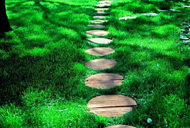 どこに続いていくのでしょうか。木漏れ日が差す芝生の上に「道」をつくるように、木製の丸い敷板が一つまた一つと連なっています。1987年2月、池田先生がアメリカ・ロサンゼルスで撮影しました。後継の友が一歩また一歩と、勝利の未来へ歩みを進めていくことを祈り信じながら