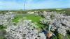 東京ドーム34個分の広さの戸田墓園。池田先生が恩師の故郷に築いた園は、今年も桜花爛漫。世界につながる海を望んで(5月12日、ドローンで撮影)