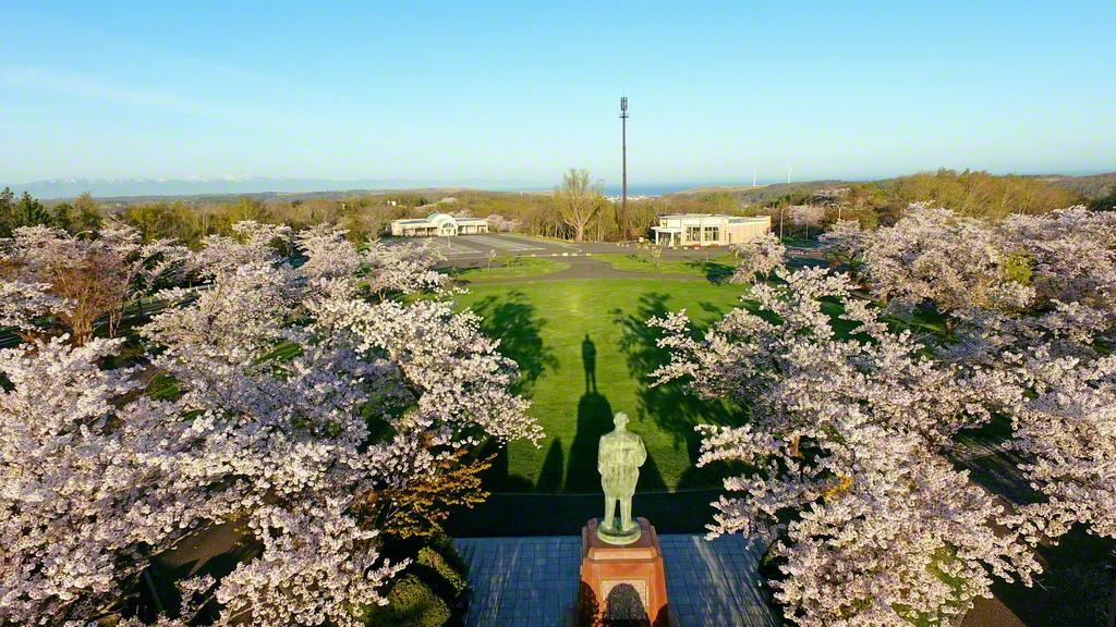 朝日に照らされた戸田先生の立像と桜