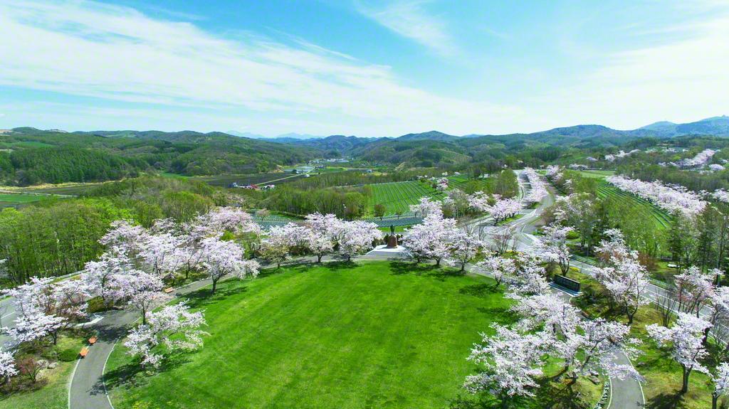 満開の桜花が園内を彩る